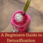 A Beginners Detoxification Guide for Energy and Vitality